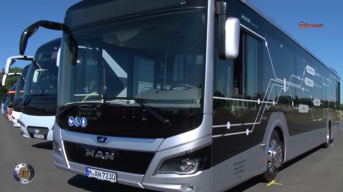 Elektryczne autobusy MAN ze Starachowic